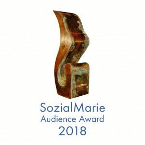 SozialMarie Közönségdíj 2018: Nyertesek